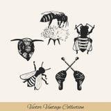 Pszczoła ustawia 2 ilustracji