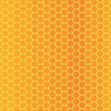 Pszczoły honeycomb tekstura Obrazy Royalty Free