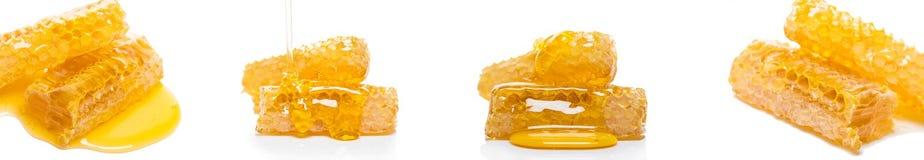 Pszczoły honeycomb z miodem, fotografia set obrazy stock