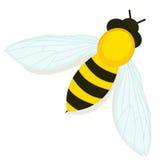 Pszczoły ikona Zdjęcie Royalty Free