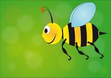 pszczoły komarnica Obraz Royalty Free