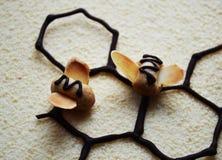 Pszczoły na czekoladowym velor Fotografia Stock