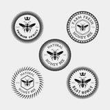 Pszczoły odznaka i etykietka Zdjęcia Royalty Free
