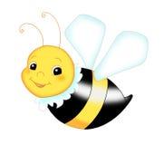 pszczoła ładna Fotografia Stock