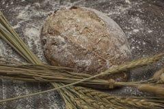 Pszeniczna mąka z świeżym gorącym chlebem Obraz Stock