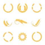 Pszeniczni ucho lub ryżowe ikony ustawiający Rolniczy pszeniczni spikelets symbole odizolowywający na białym tle Zdjęcia Stock