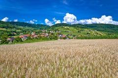 Pszeniczny pole i pictoresque górska wioska Obrazy Stock