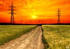 Pszeniczny pole z elektryczność pilonem przy zmierzchem Fotografia Stock