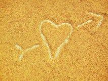 Pszeniczny serce Fotografia Royalty Free