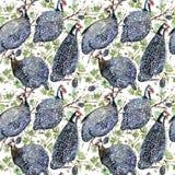 ptactwo gwinea dzikiej ptasiej akwareli bezszwowy wzór ilustracja wektor