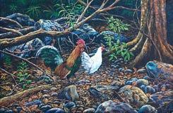 ptactwo lasowa dżungla Obrazy Royalty Free