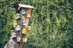 Ptaków domy na drzewie Zdjęcie Stock