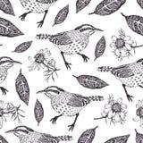Ptaków i liści tło Zdjęcia Stock