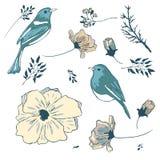ptaków kwiaty ustawiający majcherów wektor Obraz Royalty Free