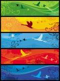 ptaków sztandarów pór roku ilustracja wektor