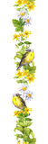 Ptak, łąkowi kwiaty, ziele Wiosny akwarela Bezszwowy rabatowy pasek Zdjęcia Royalty Free