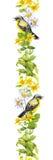 Ptak, łąkowi ziele akwarela Bezszwowy rabatowy lampas Obraz Royalty Free