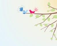 ptak Obrazy Royalty Free