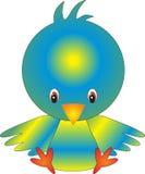 ptak Zdjęcia Stock