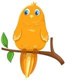 ptak gałąź ilustracji