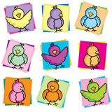 ptak kolekci wiosna Zdjęcie Royalty Free
