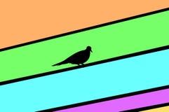 Ptak na elektrycznym kablu fotografia royalty free