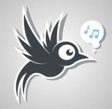 ptak śpiewa Obraz Stock