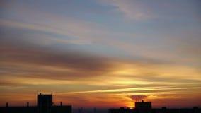 Ptak Przeciw niebu Przy wschodem słońca zbiory wideo