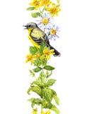 Ptak w kwiatach, dzicy ziele watercolour Wielostrzałowa granicy rama Obraz Stock