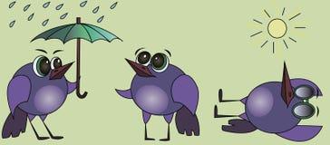 Ptak z parasolem Ptak sunbathing obcy kreskówka komunikuje dyrektor śmieszną ilustracyjną językową filmu znaka przestrzeń ilustracja wektor