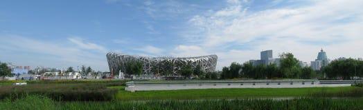 ptaka beijing gniazdo jest stadion olimpijski Obraz Stock