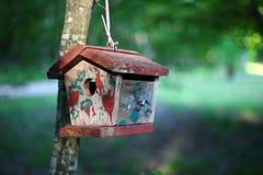 Ptaka dom w lesie Zdjęcia Royalty Free
