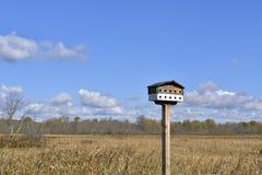 Ptaka dom w niebieskim niebie Obraz Stock