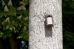 Ptaka dom z wejściową dziurą. Obrazy Stock
