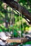 ptaka gałęziastego dozownika wiszący drzewo Zdjęcie Royalty Free