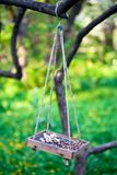 ptaka gałęziastego dozownika wiszący drzewo Obraz Stock
