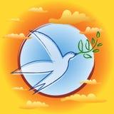 ptaka gałęziasty oliwny pokoju symbol Obrazy Stock