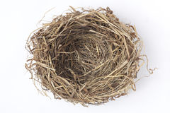 ptaka gniazdeczko Obrazy Stock