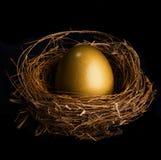 Ptaka gniazdeczko z złotym jajkiem Zdjęcia Stock