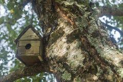 Ptaka Gniazdowy Drewniany dom Zdjęcie Royalty Free
