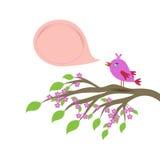 Ptaka i mowy bąbla szablon Zdjęcie Royalty Free