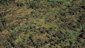 Ptaka oka widok odludzia pasmo górskie zbiory wideo