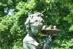 Ptaka skąpanie fotografia royalty free