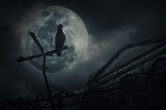 Ptaka stojak na drewnie krzyżuje płotowego, starego grunge kasztel, księżyc i Zdjęcia Royalty Free