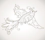 ptaka wektor Obrazy Stock