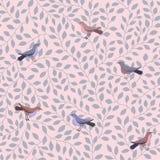 Ptaka wzór Fotografia Royalty Free