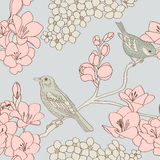 ptaka wzór Zdjęcia Royalty Free