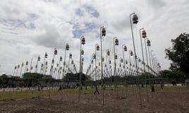 Ptaki śpiewa contets Zdjęcia Stock
