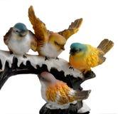 ptaki Zdjęcia Royalty Free