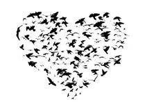 Ptaki royalty ilustracja
